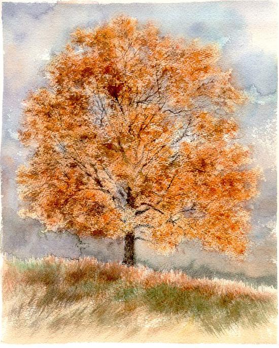 I paesaggi degli acquerelli di Giampiero Pierini, Quattro stagioni, autunno
