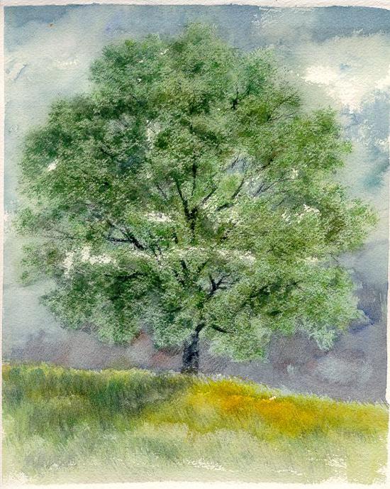 I paesaggi degli acquerelli di Giampiero Pierini, Quattro stagioni, estate
