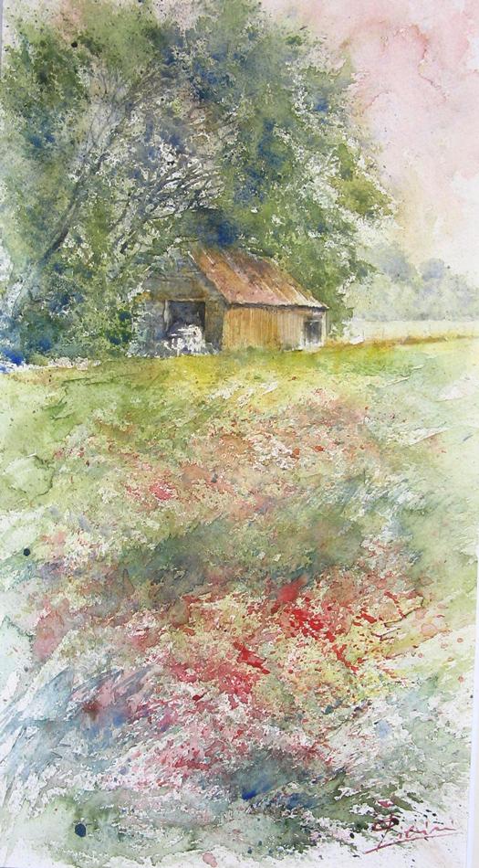 I paesaggi degli acquerelli di Giampiero Pierini, Prati fioriti