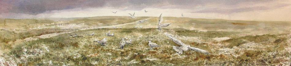 I paesaggi degli acquerelli di Giampiero Pierini, Pensando al mare