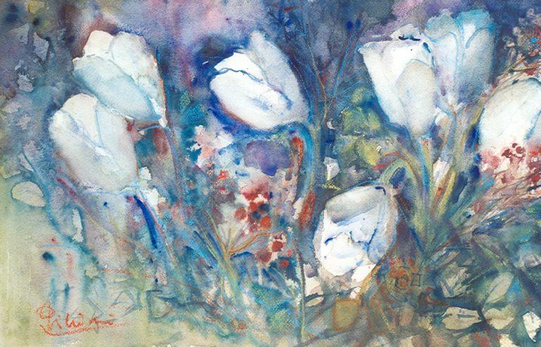 Le composizioni degli acquerelli di Giampiero Pierini, Studio di tulipani
