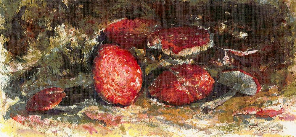 Le composizioni degli acquerelli di Giampiero Pierini, Luce dei boschi