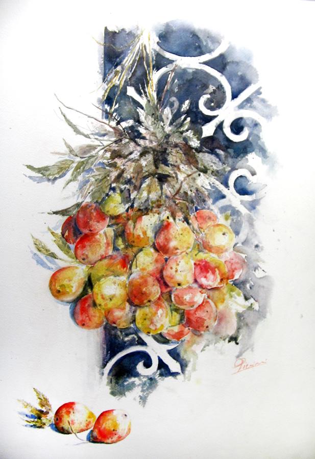 Le composizioni degli acquerelli di Giampiero Pierini, Mazzo di sorbe