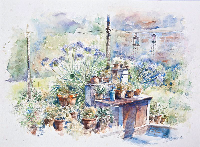 Altre opere e soggetti degli acquerelli di Giampiero Pierini, il giardino degli agapanthus
