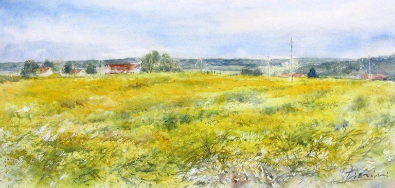 I paesaggi degli acquerelli di Giampiero Pierini, luce pomeridiana nei campi