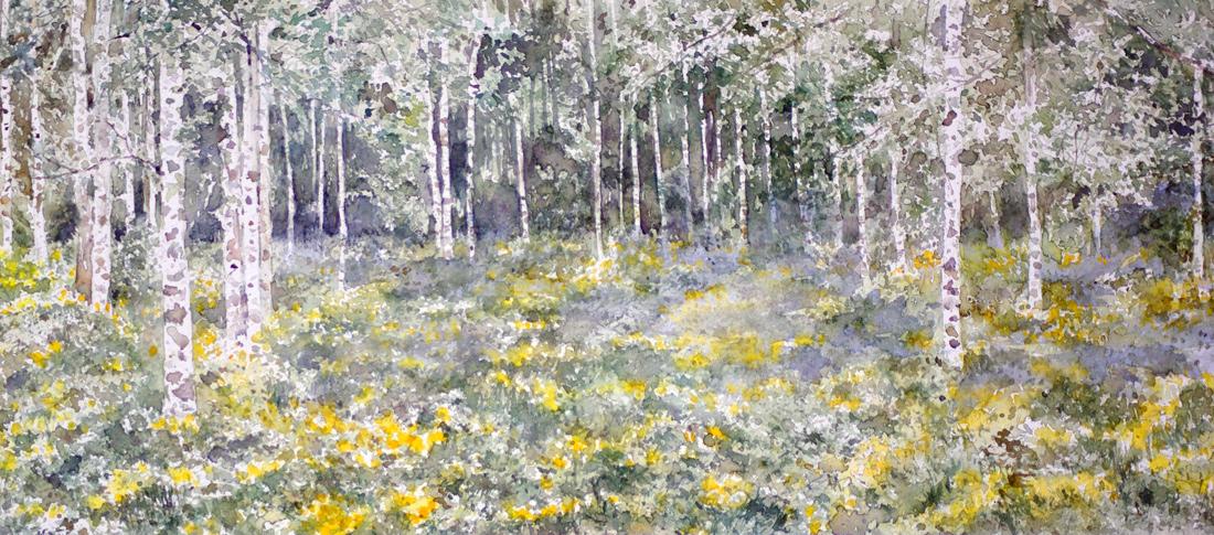 I paesaggi degli acquerelli di Giampiero Pierini, primavera sotto le betulle