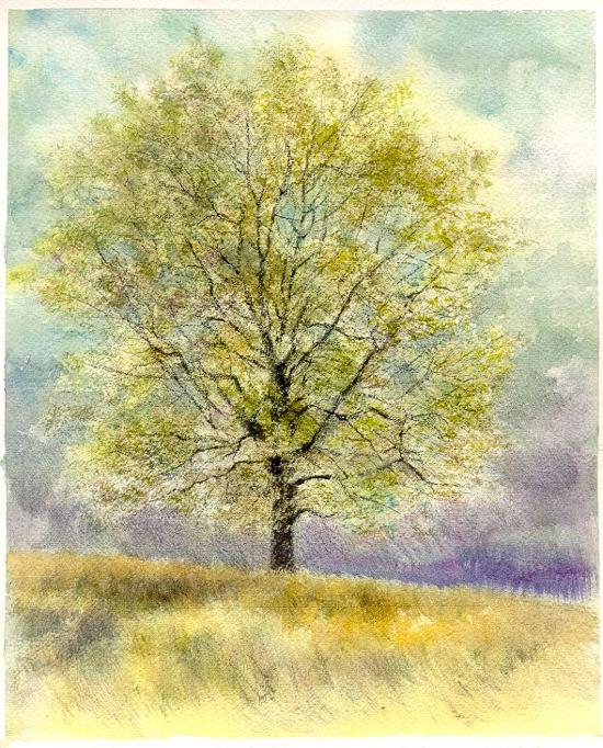 I paesaggi degli acquerelli di Giampiero Pierini, Quattro stagioni, primavera