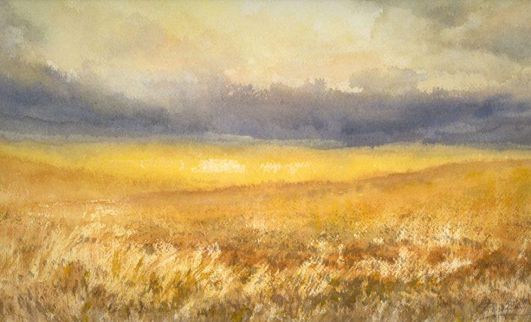 I paesaggi degli acquerelli di Giampiero Pierini, Maturano i campi