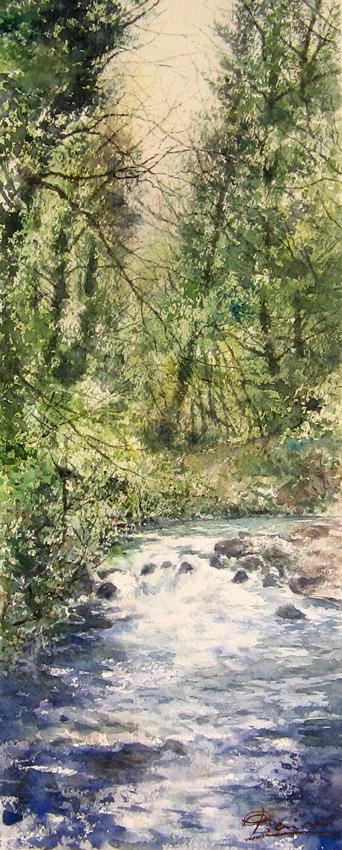 I paesaggi degli acquerelli di Giampiero Pierini, Il fiume nel fitto del bosco