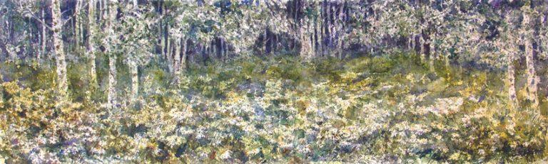 I paesaggi degli acquerelli di Giampiero Pierini, In un bosco di betulle