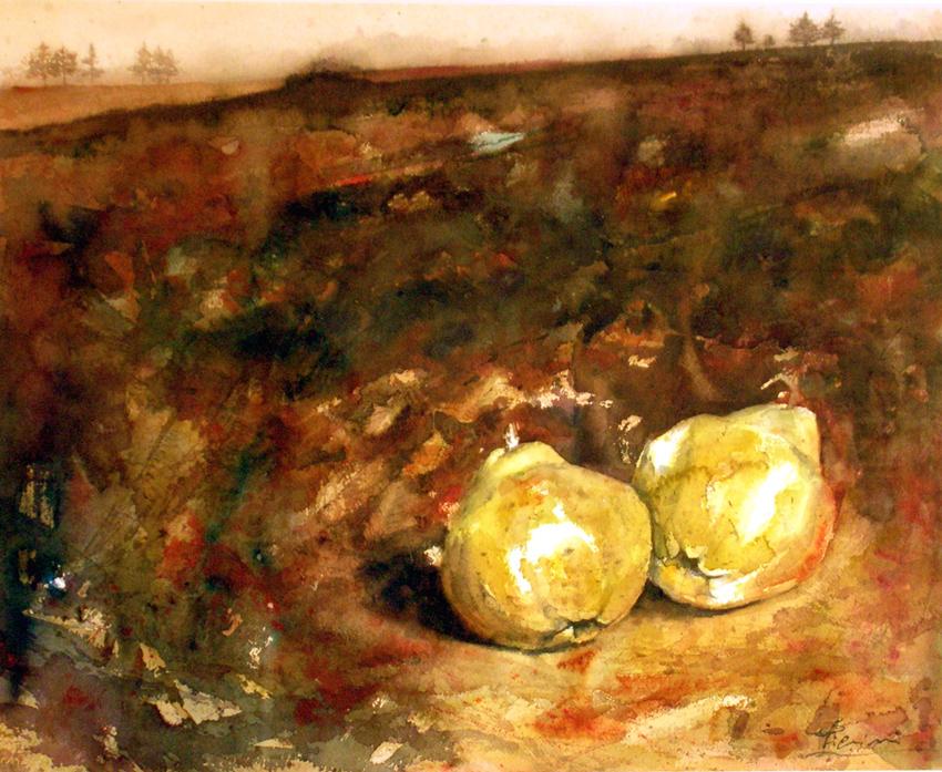I paesaggi degli acquerelli di Giampiero Pierini, Terra scura