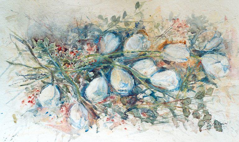 Le composizioni degli acquerelli di Giampiero Pierini, I tulipani