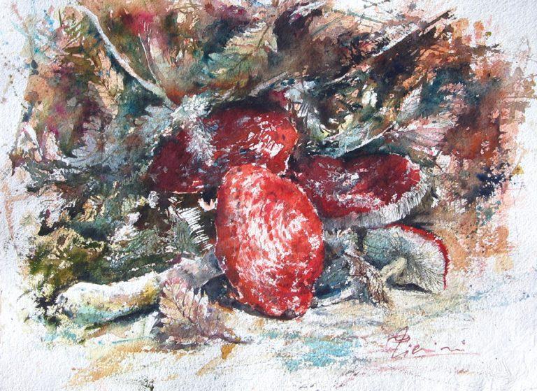 Le composizioni degli acquerelli di Giampiero Pierini, Funghi dal sottobosco
