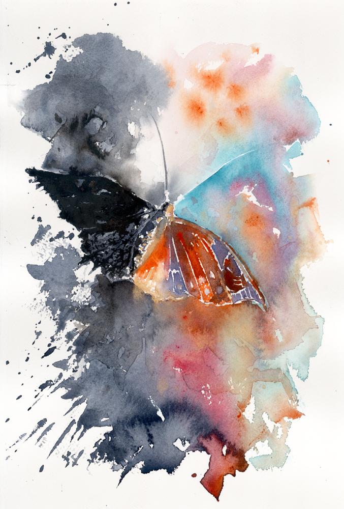 Le composizioni degli acquerelli di Giampiero Pierini, Farfalla in volo