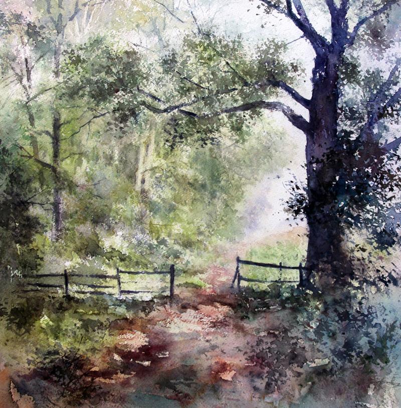 I paesaggi degli acquerelli di Giampiero Pierini, un vialetto nel bosco