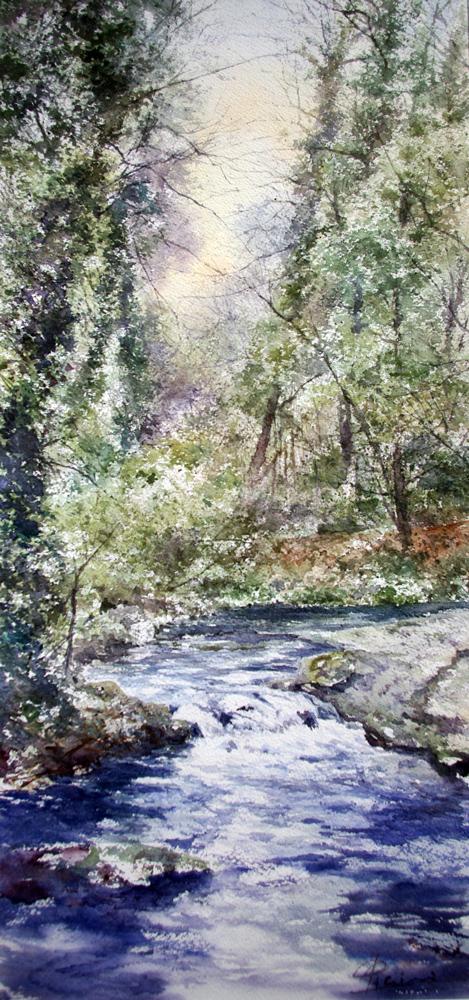 I paesaggi degli acquerelli di Giampiero Pierini, un ruscello nel bosco